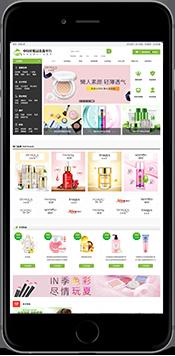 澹远商城-中国化妆品集散平台
