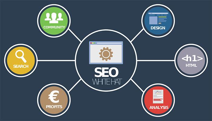 网站建设,seo公司,关键词优化